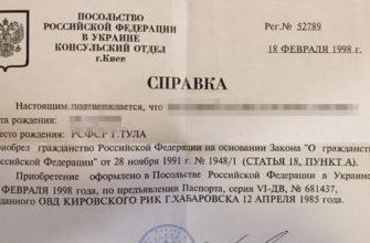 Как получить справку о гражданстве российской федерации в 2020 году