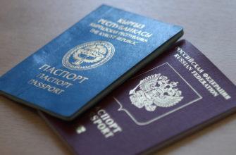Уведомление о втором гражданстве через Госуслуги, МФЦ в 2020 году